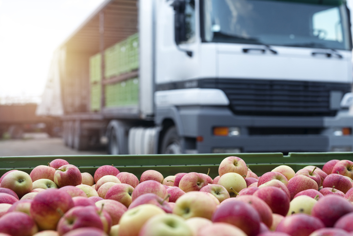 Data Science Helps Food Shipping